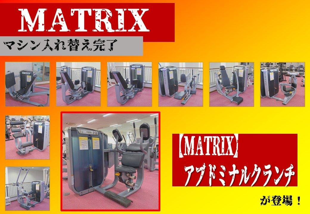MATRIX横.jpg